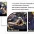 blouse-hitam-bermotif-rantai-modis-2016-terbaru
